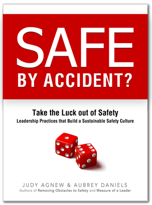 Safe by Accident? book