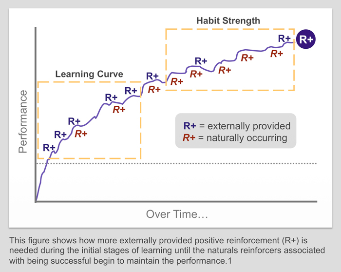 learning curve, habit strenght