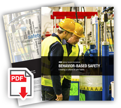 Behavior Based Safety brochure
